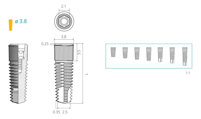 Dimensions of a screw implant with a diameter of 3,8 mm