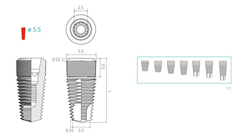 Dimensions of a screw implant with a diameter of 5,5 mm